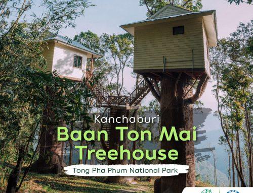 Kanchaburi's Baan Ton Mai treehouse
