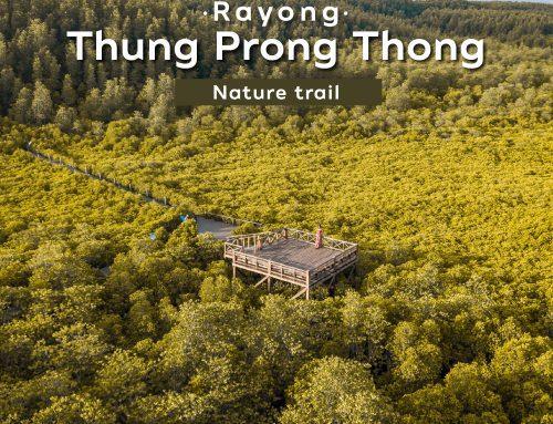 Thung Prong Thong ,Rayong