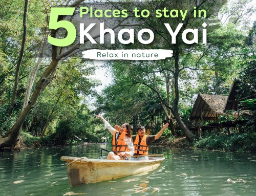 Introducing 5 fantastic places to stay in Khao Yai